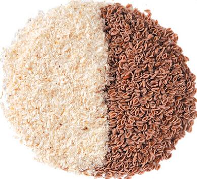 psyllium-seed-husks