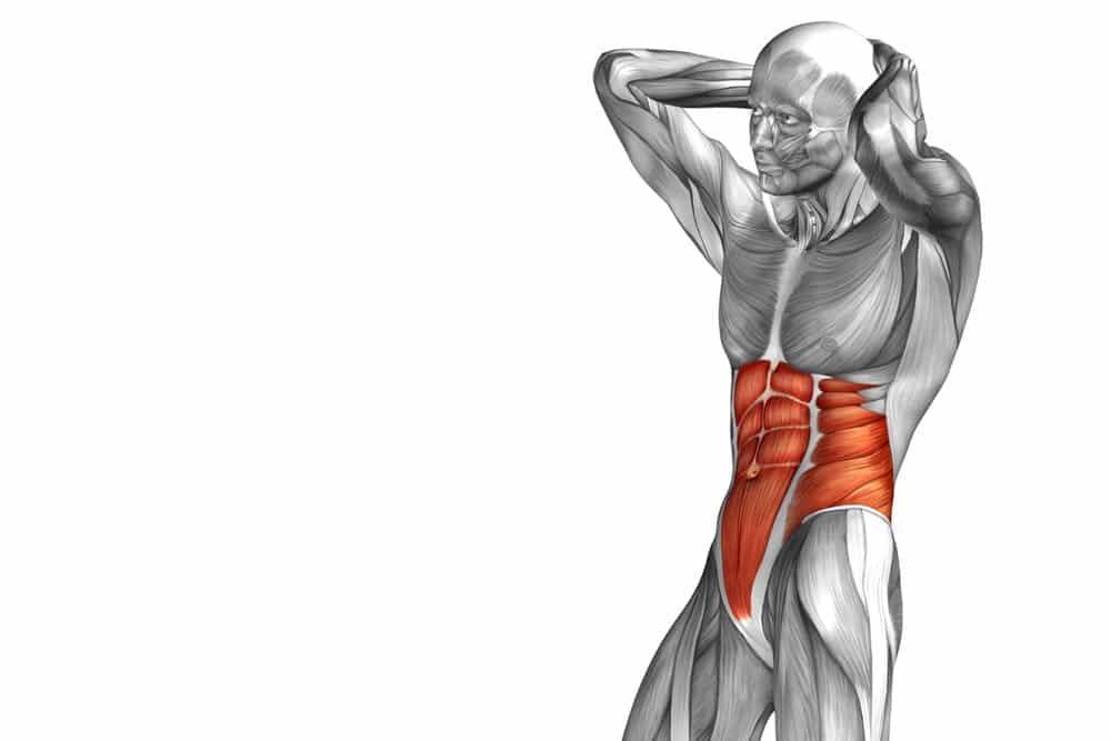 Orientar sus abdominales inferiores con estos 11 ejercicios del ...